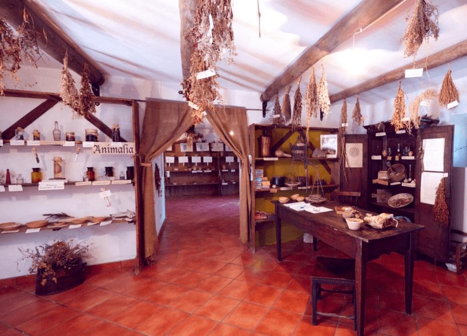 Herbs Museum Naples Italy